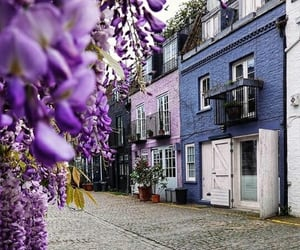 flowers, london, and Notting Hill image