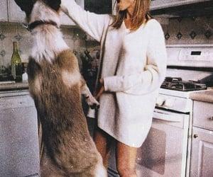 dog, Jennifer Aniston, and animal image