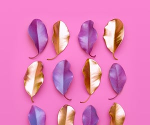 gold, pink, and purple image