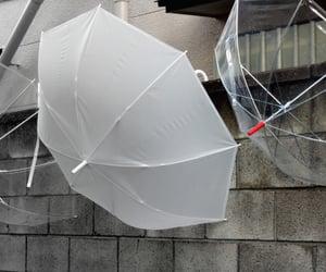 theme, umbrella, and aesthetic image