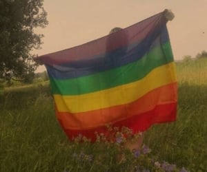 rainbow, aesthetic, and pride image