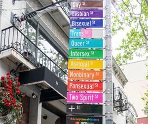 gay, lgbt, and nyc image