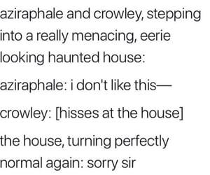 aziraphale, hilarious, and meme image