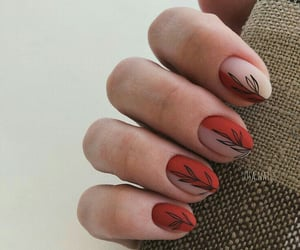 beauty, design, and nails art image