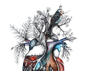 heart, animal, and art image