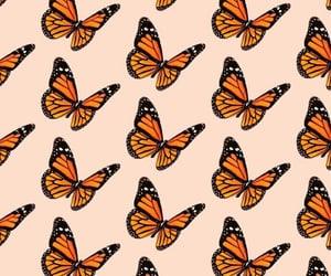 mariposas, wallpaper, and wallpapers image