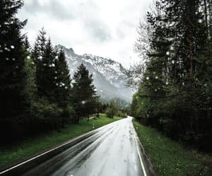 beautiful, nature, and rain image
