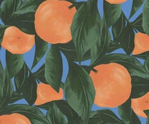 peach, background, and fruit image