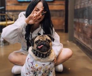 billie eilish and dog image