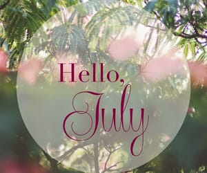 inspiration, july, and plants image