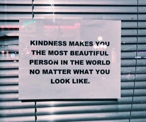 kindness, quotes, and beautiful image