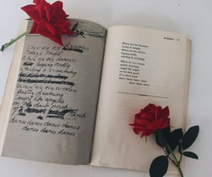 article, love, and emily dickinson image