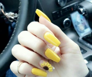 flowers, nails, and sunflower image