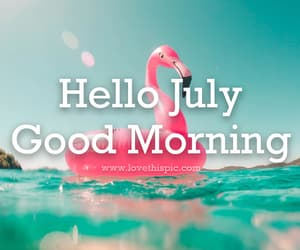 flamingo, good morning, and summer image