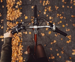 best friends, bicycle, and autumn leaves image