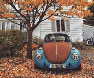 car, autumn, and fall image