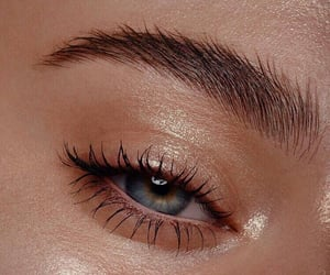 eye, beauty, and eyebrows image