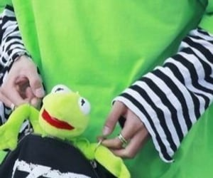 kermit, Seventeen, and minghao image