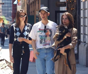 celebs, dogs, and fashion image