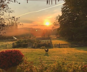 nature, sunrise, and beautiful image