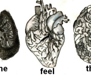 feel, think, and breathe image