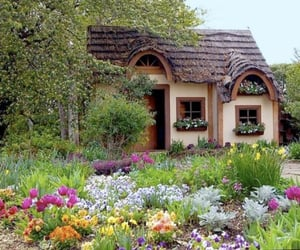 flowers, house, and cottage image