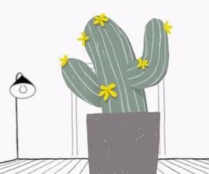 cactus, exo, and mv image