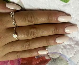 elegance, ring, and rose image