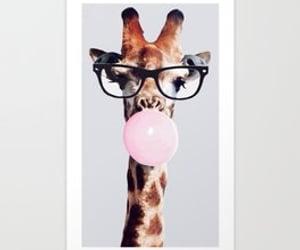 african animals, giraffe, and wild animals image