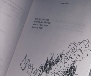 him, milk and honey, and poetry image