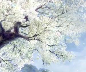 anime, sakura, and wei ying image