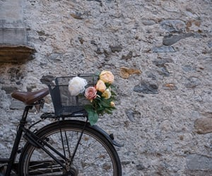 bike, destination, and medium format image