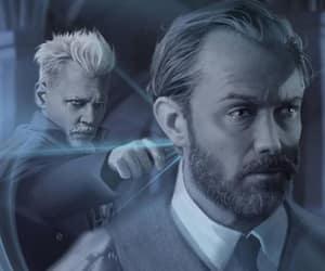 albus dumbledore, dumbledore, and albus image