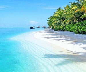 travel, beach, and earth image
