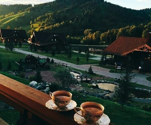 nature, places, and tea image
