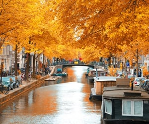 amsterdam, autumn, and netherlands image