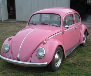 beetle, car, and pink image