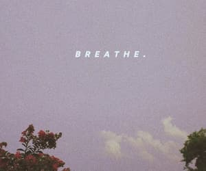 aesthetic, breathe, and grain image