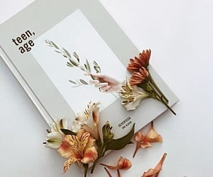 aesthetic, album, and flowers image