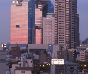 japan, city, and pink image