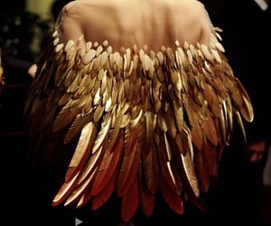 fashion, gold, and feather image