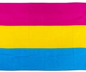 flag, gay pride, and pansexual pride image