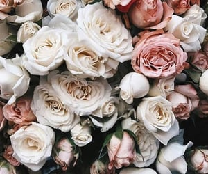 chic, floral, and flowers image