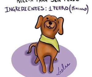 amigo, felicidad, and quotes image