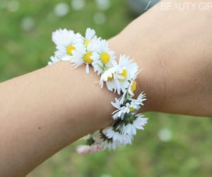 bracelet, daisies, and flower image