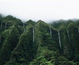 green, hawaii, and india image