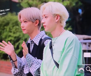 aussie, Chan, and felix image
