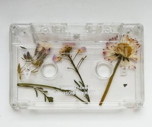flowers, cassette, and aesthetic image