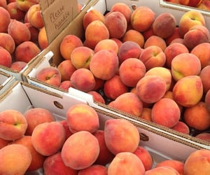 peach, fruit, and aesthetic image