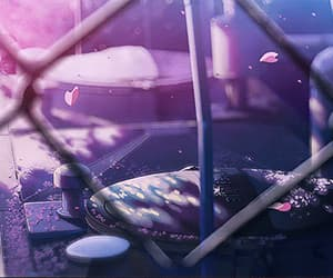 gif and 5 centimeters per second image